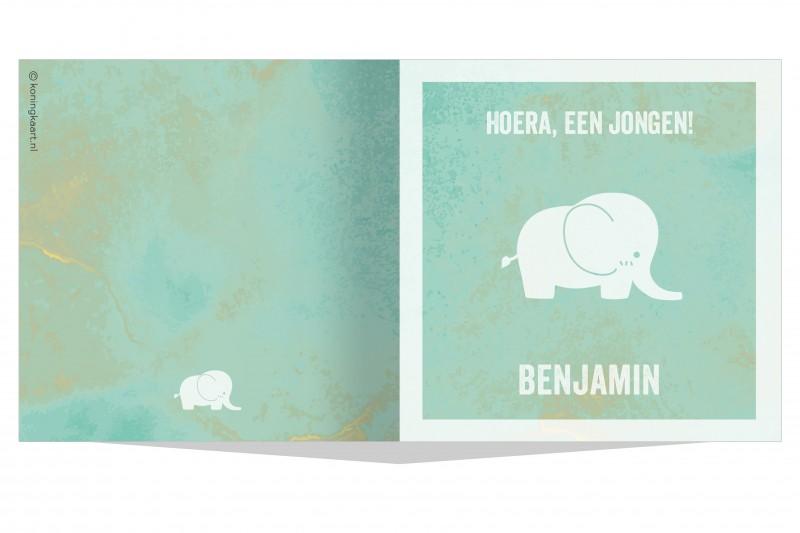 Geboortekaartje Waterverf olifant