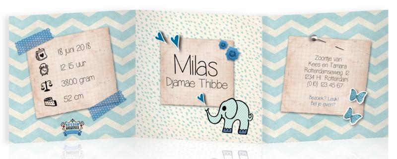 Geboortekaartje Zigzag drieluik olifant