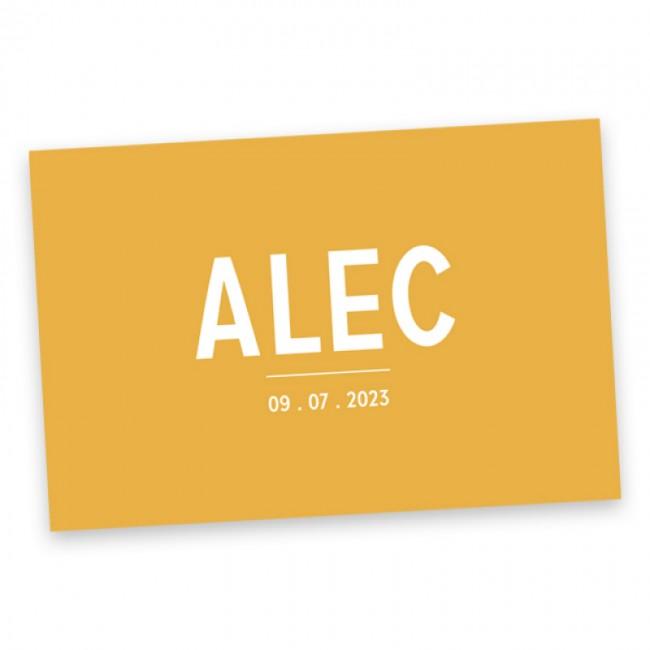 Geboortekaartje Alec