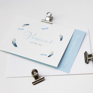 Geboortekaartje DIY met blauwe veren