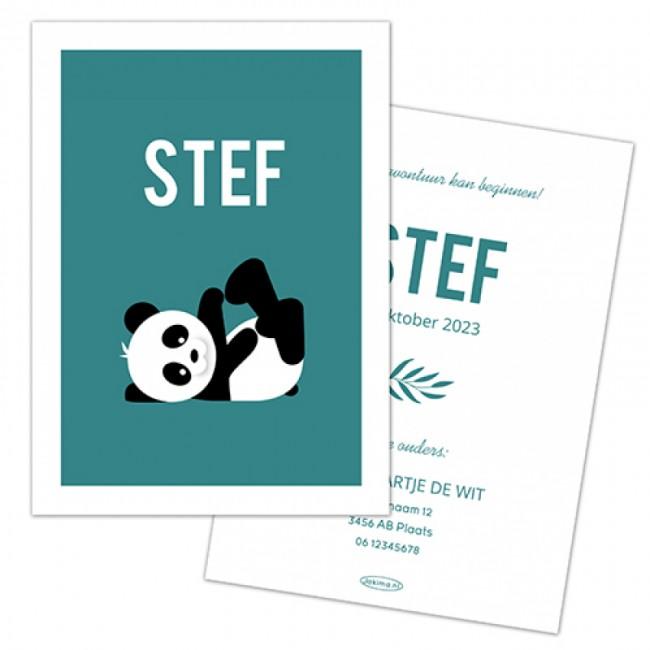 Geboortekaartje DIY panda