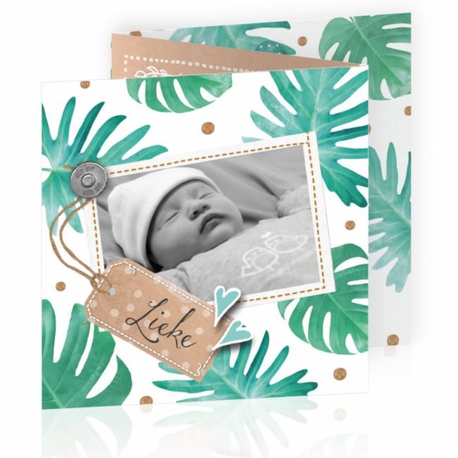 Geboortekaartje Botanisch met foto