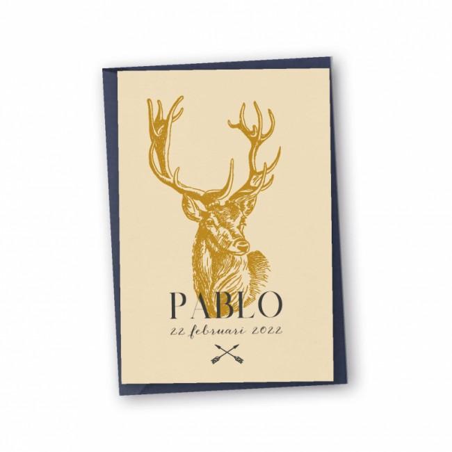 Geboortekaartje Echt karton Pablo