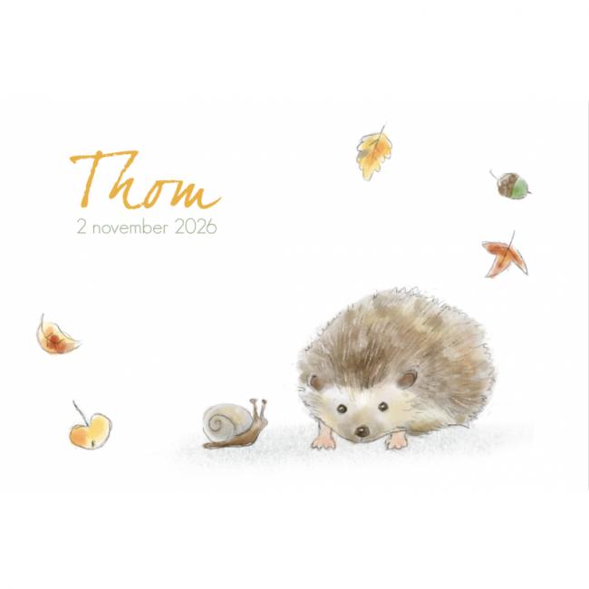 Geboortekaartje Egel herfst