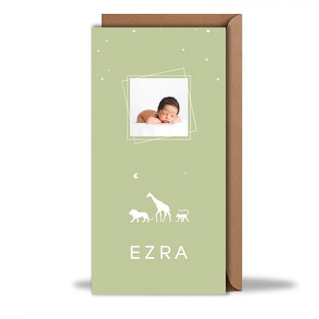 Geboortekaartje foto en dieren