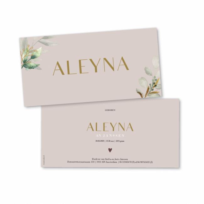 Geboortekaartje Geboortekaart Aleyna