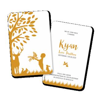 Geboortekaartje geboortekaart - Kyan