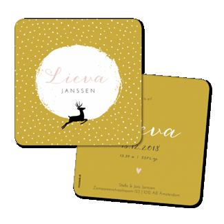 Geboortekaartje Geboortekaart - Lieva