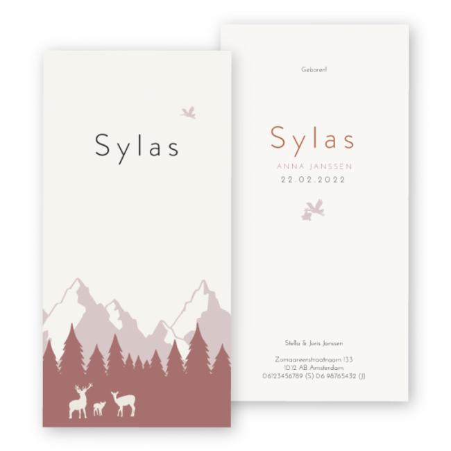 Geboortekaartje Geboortekaart Sylas