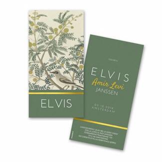 Geboortekaartje geboortekaartje - Elvis