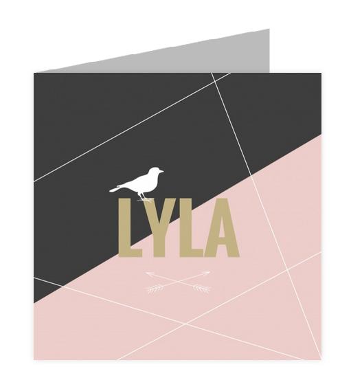 Geboortekaartje geboortekaartje - Lyla