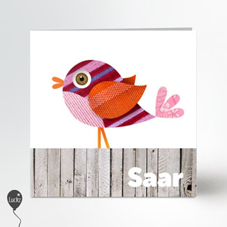 Geboortekaartje Geboortekaartje vogeltje