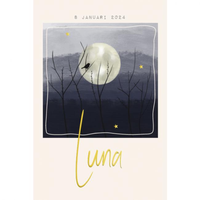 Geboortekaartje geschilderd maan vogel