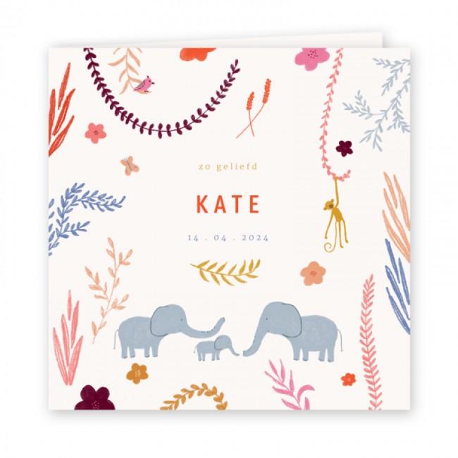 Geboortekaartje Getekende olifantjes