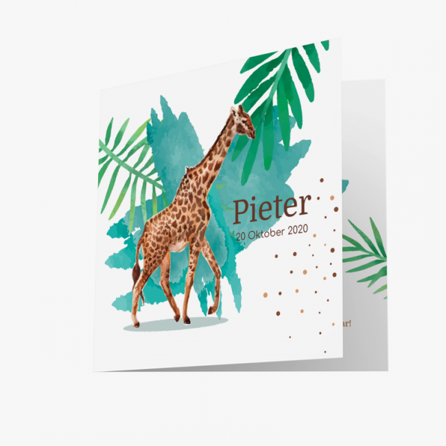 Geboortekaartje Giraffe kaart blauw