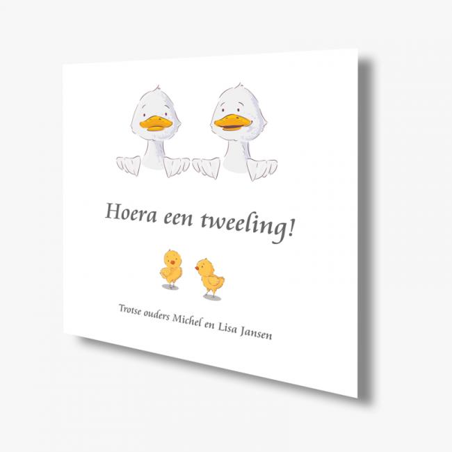 Geboortekaartje Kaart tweeling eendjes