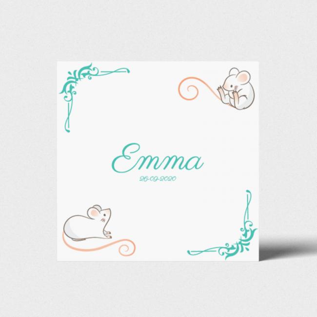 Geboortekaartje Kaartje met muizen