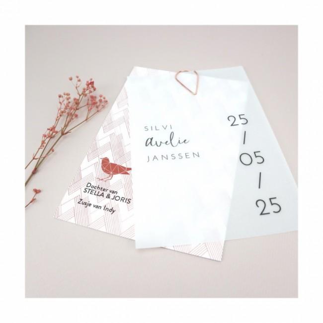 Geboortekaartje Kalkpapier Silvi