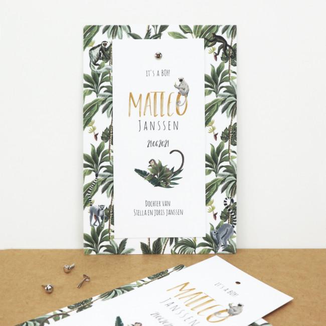 Geboortekaartje Klembord labels jungle