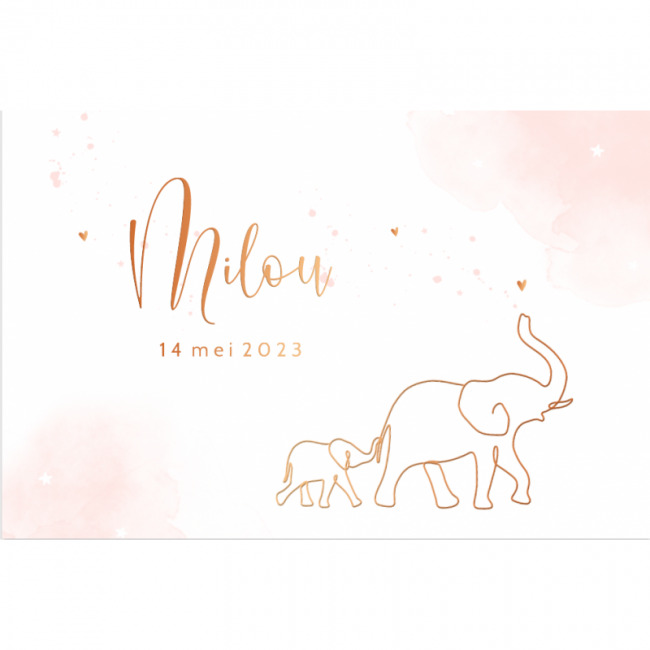 Geboortekaartje Koperfolie olifant meisje
