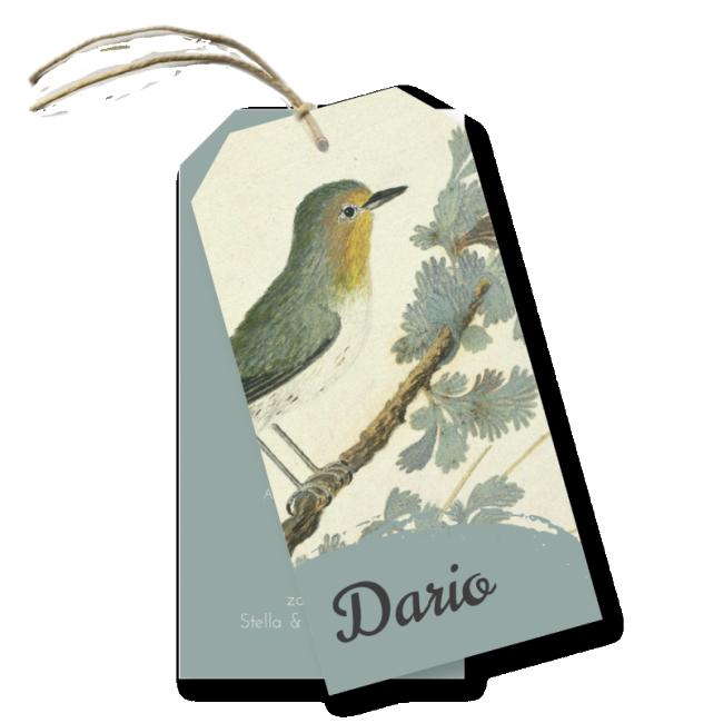 Geboortekaartje Label kaartje - Dario