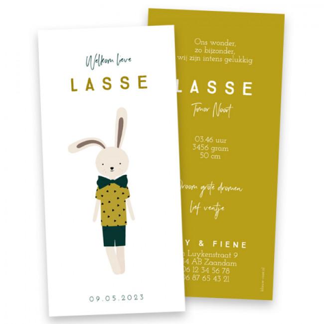 Geboortekaartje Lasse