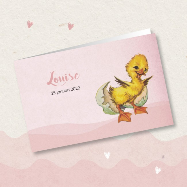 Geboortekaartje Roze met lief eendje