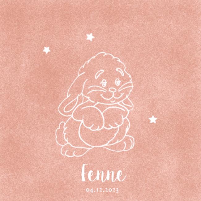 Geboortekaartje lijntekening konijn