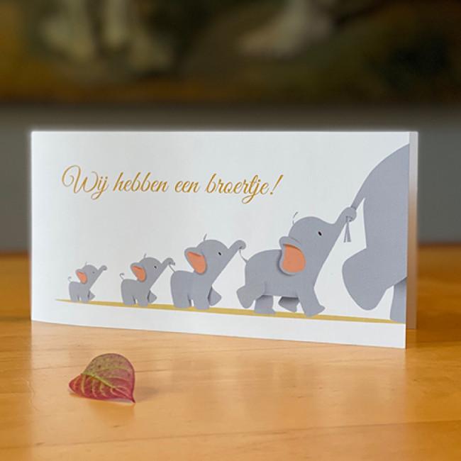 Geboortekaartje olifanten op een rij
