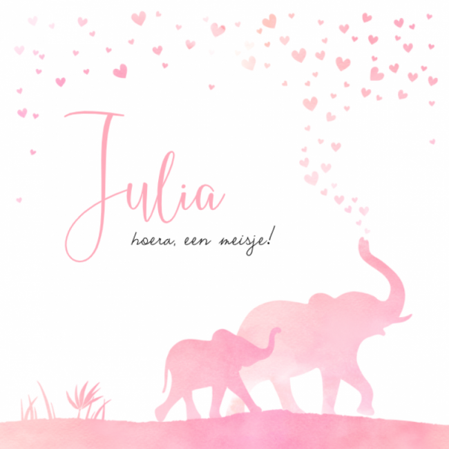 Geboortekaartje Olifanten roze en hartjes