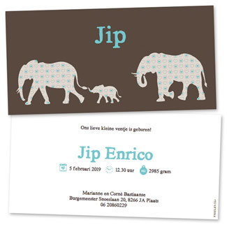 Geboortekaartje Olifantjes jongen