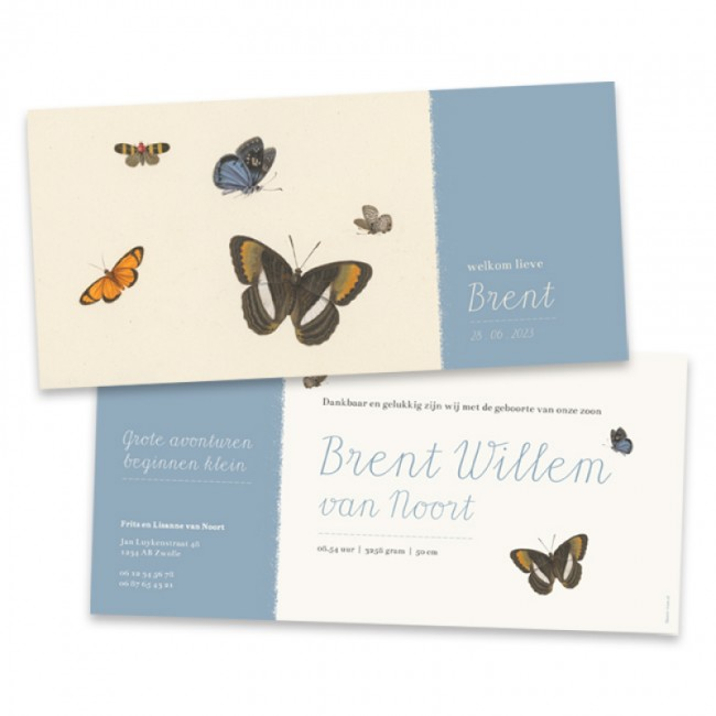 Geboortekaartje Rijksmuseum vlinders