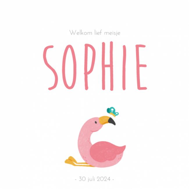 Geboortekaartje Roze flamingo