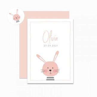 Geboortekaartje Roze haasje