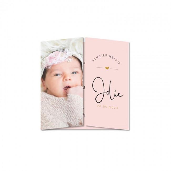 Geboortekaartje Roze tweeluik foto
