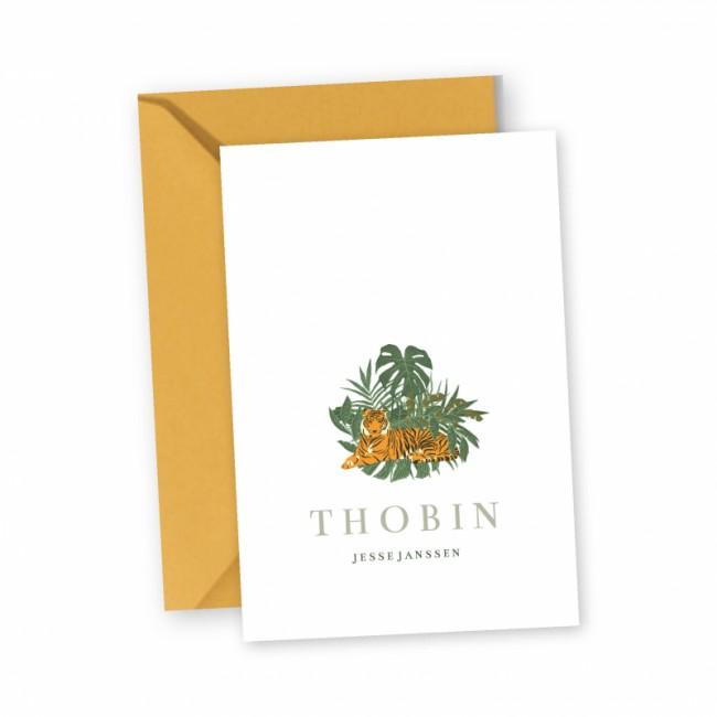 Geboortekaartje Tijger Thobin