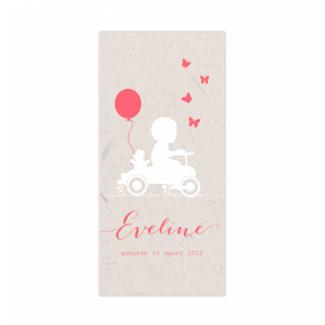 Geboortekaartje Trapauto kaartje