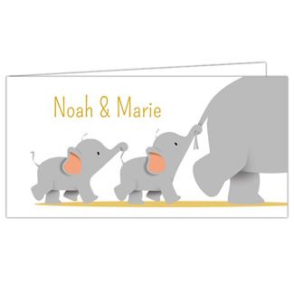 Geboortekaartje tweeling olifant