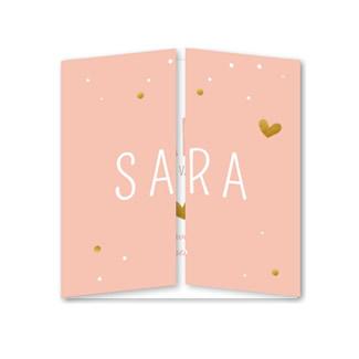 Geboortekaartje Tweeluik roze met stipjes