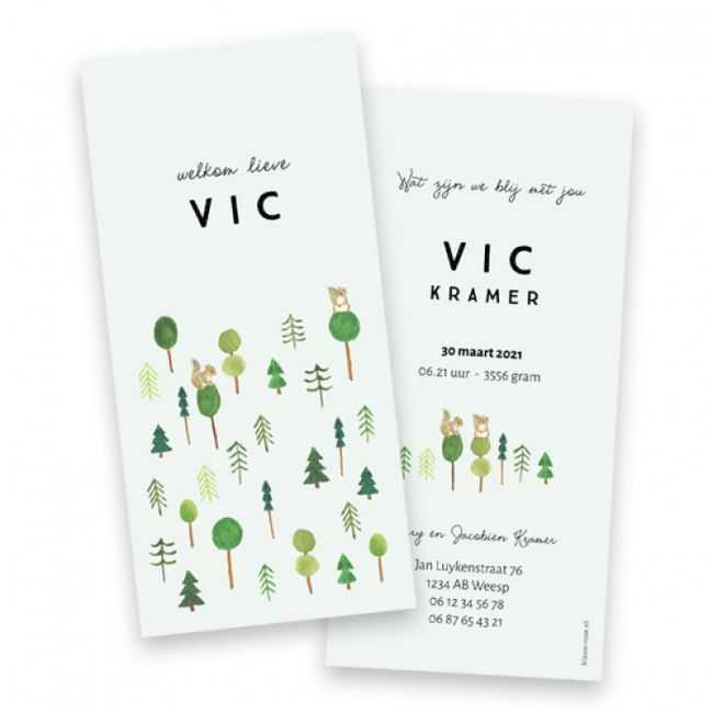 Geboortekaartje Vic