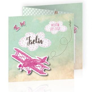 Geboortekaartje Vliegtuig en bagagelabel