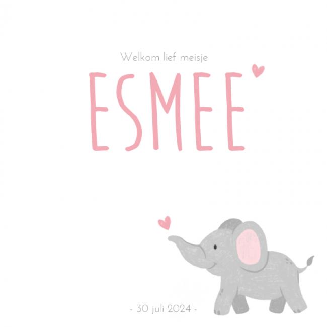 Geboortekaartje Zacht roze olifantje