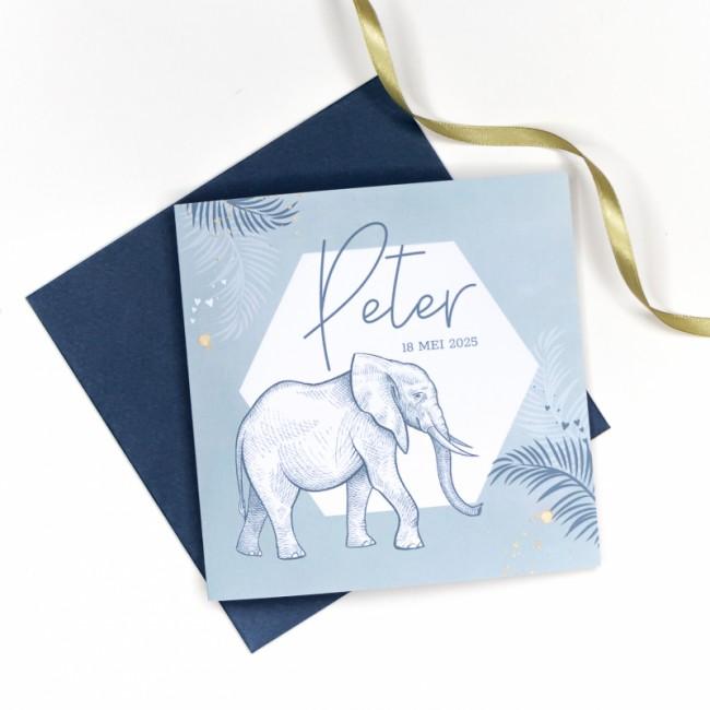 Geboortekaartje Zeshoek met olifant